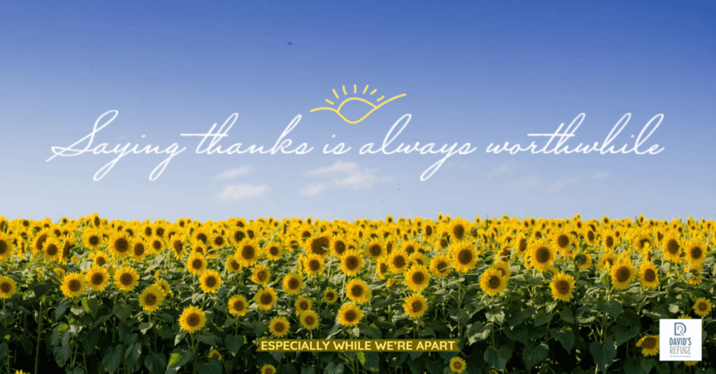 Free Shareable Gratitude Graphics